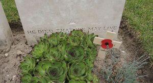 Le cimetière militaire d'Etaples