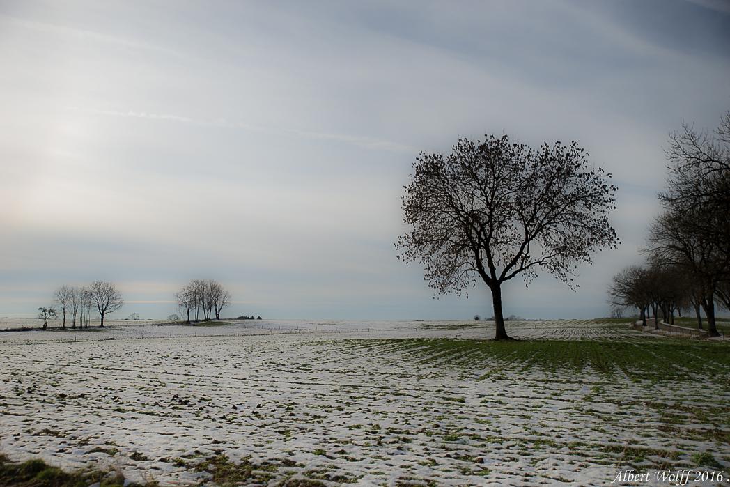 Bouts de neige