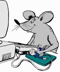 Drôles de souris.