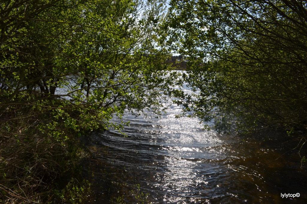 Le lac de Bruyère à Millières (4)