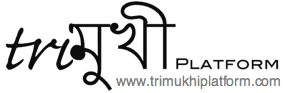 Trimukhi activities December 2012 - April 2013