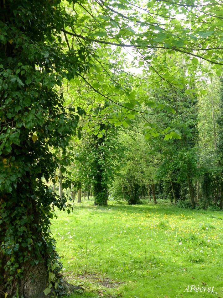 Le parc Bonvallet
