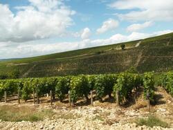 Reco Bourgogne 2012-07-14
