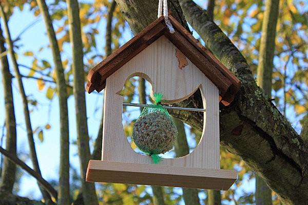 mangeoire pour les oiseaux4