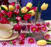Bon Dimanche ! Printemps ...
