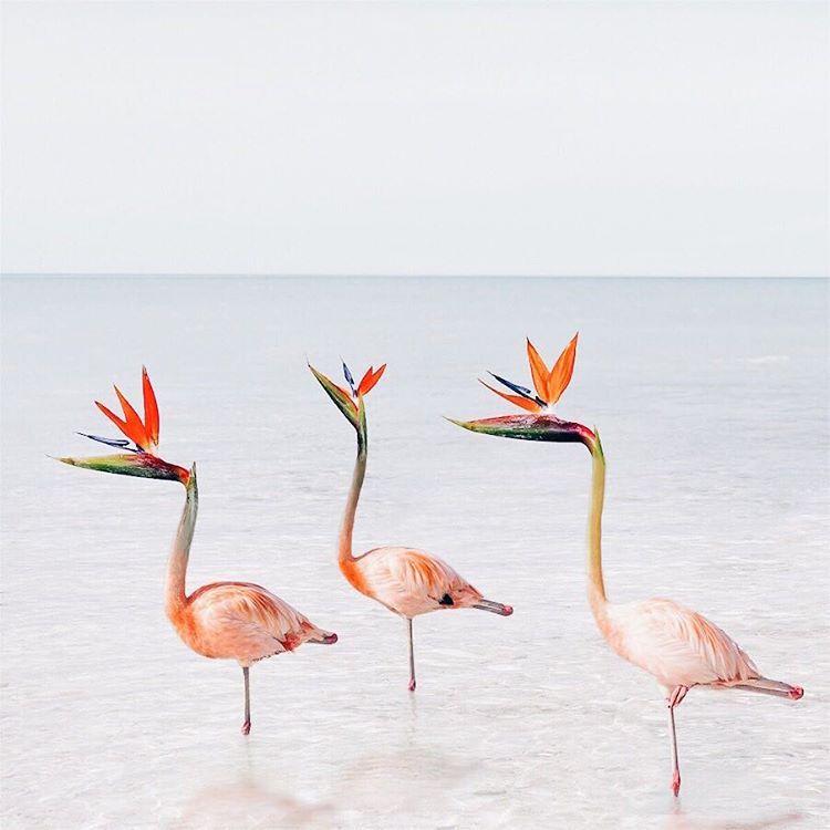 Les-magnifiques-images-surrealistes-de-Luisa-Azevedo-14 Les magnifiques images surréalistes de Luisa Azevedo