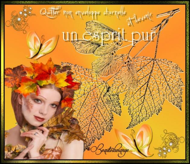 Créas automne