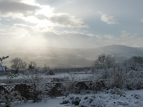 Première neige 26-27 novembre 2011 (7)
