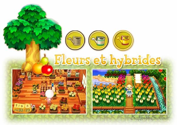 Comment créer des fleurs hybrides ?