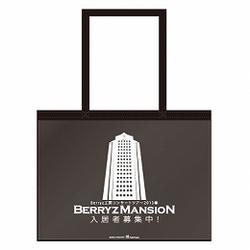 Berryz Kobo Concert Tour 2013 Spring ~Berryz Mansion Nyuukyosha Boshuuchuu!~