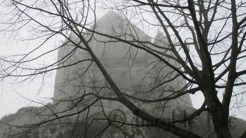 La Tour César de Provins dans la brume et les branches.