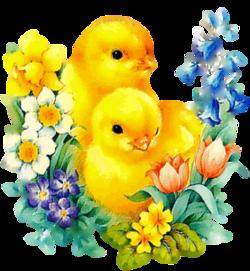 15 images et gifs de Pâques