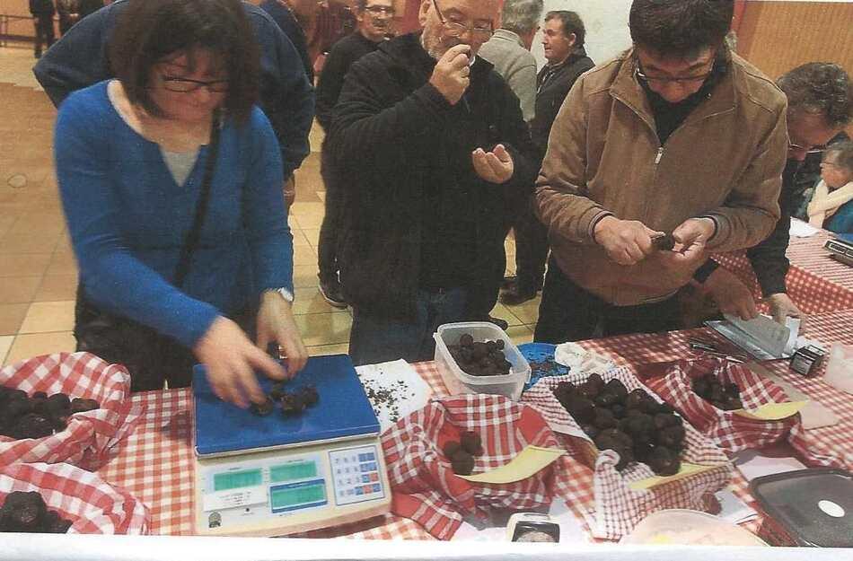 Marché aux truffes de Jarnac