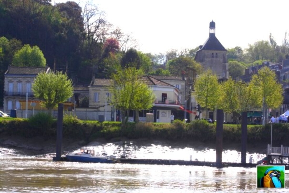 Balade sur la Garonne, il y déjà quelques temps