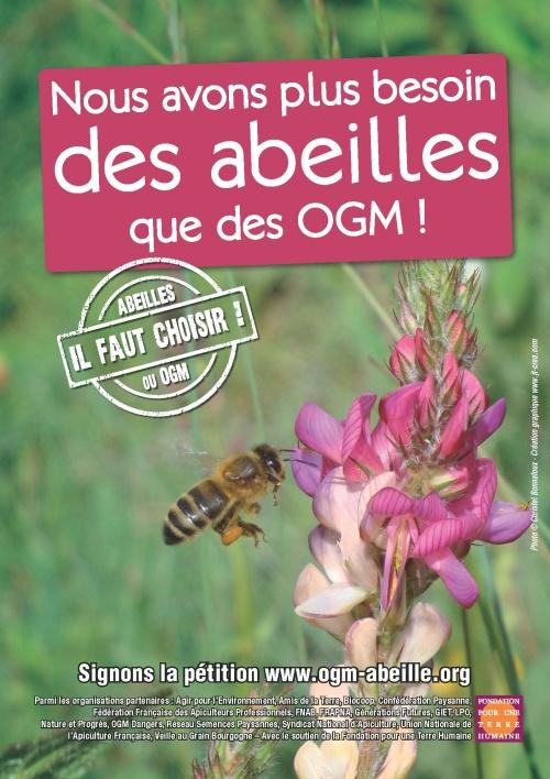 Pour une protection de l'apiculoture et des consommateurs face au lobby des OGM.