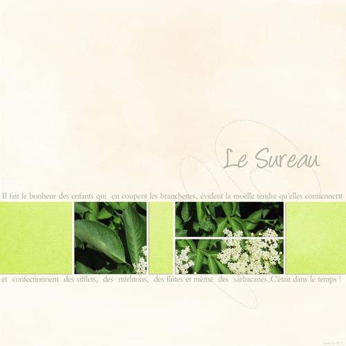 Lukas [6ans] par Laurence Designs sort aujourd'hui
