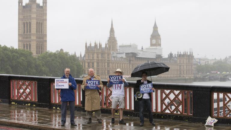 """Des partisans du """"Remain"""" militent pour le maintien du Royaume-Uni au sein de l'Union européenne, à Londres, le 20 juin 2016."""