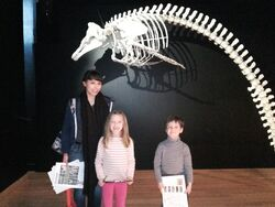 jeudi 7 avril, sortie au Musée d'histoire naturelle
