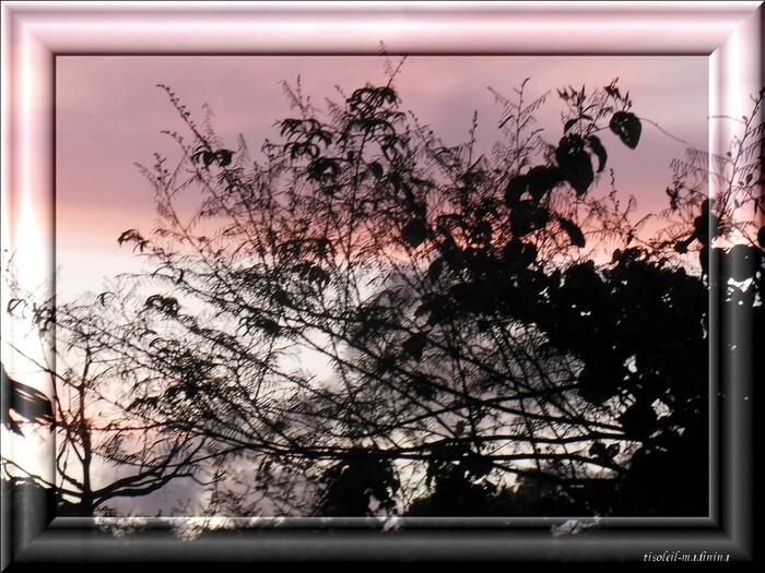 Après le coucher du soleil le ciel chez moi en Martinique