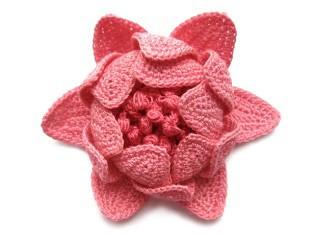 grose-fleur-Mypicot.jpg