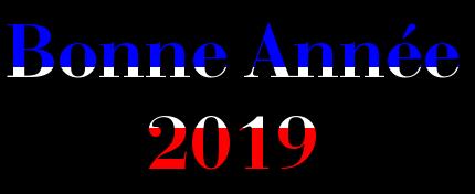 NOUVELLE ANNEE 2019