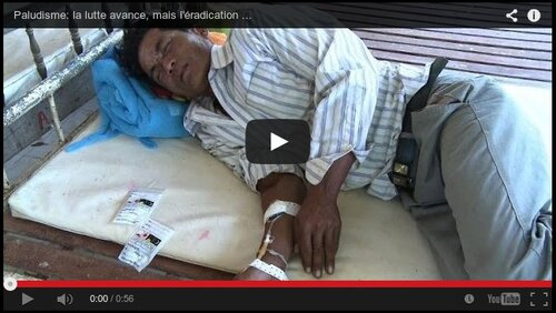 Journées de lutte contre le paludisme...