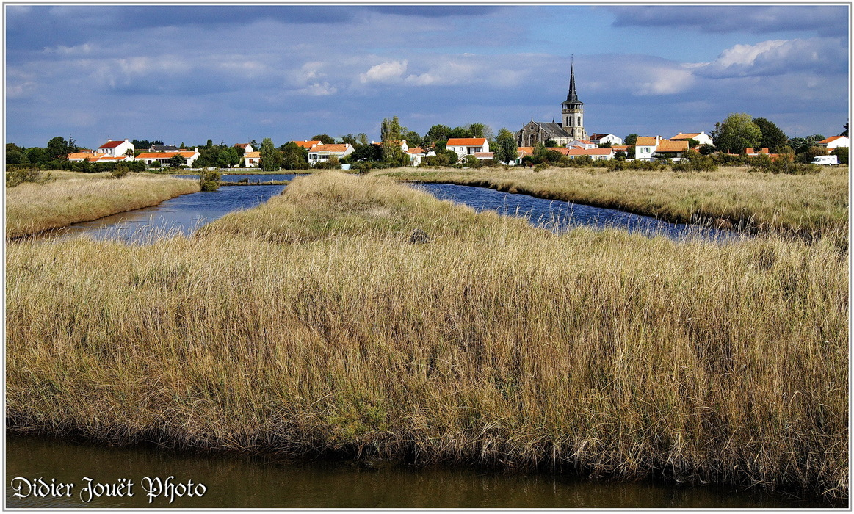 85 - Vendée / L'île d'Olonne _ 03