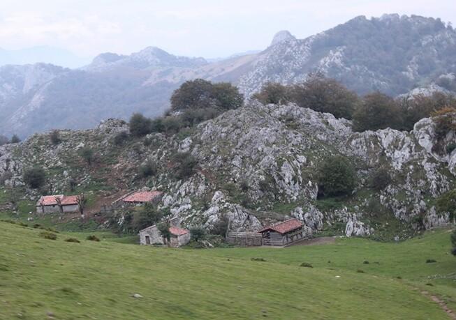 5 Sur la route du lac de Covadonga (50)