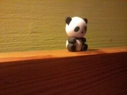 Ma p'tite gomme panda