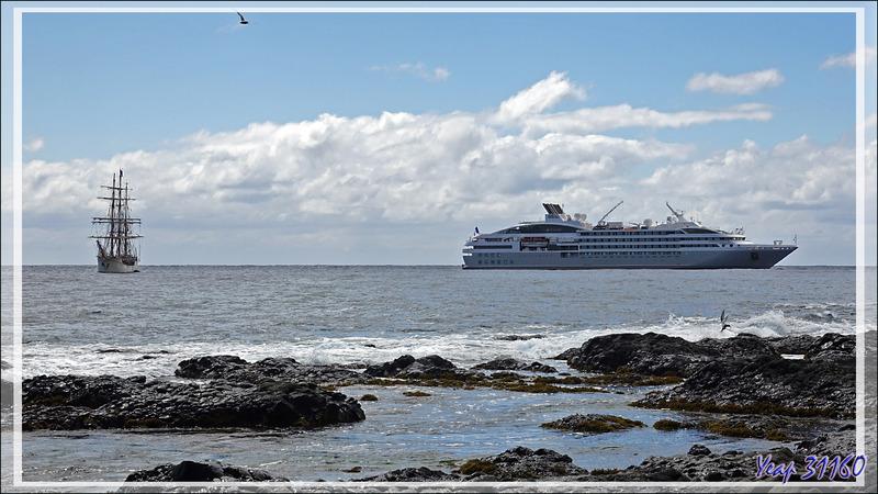 Petit tour sur la plage - Edinburgh of the Seven Seas - Tristan da Cunha