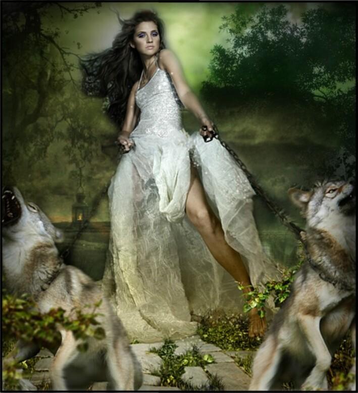 Les loups hurlent