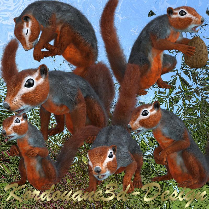 Image d'écureuil roux (tube-render)