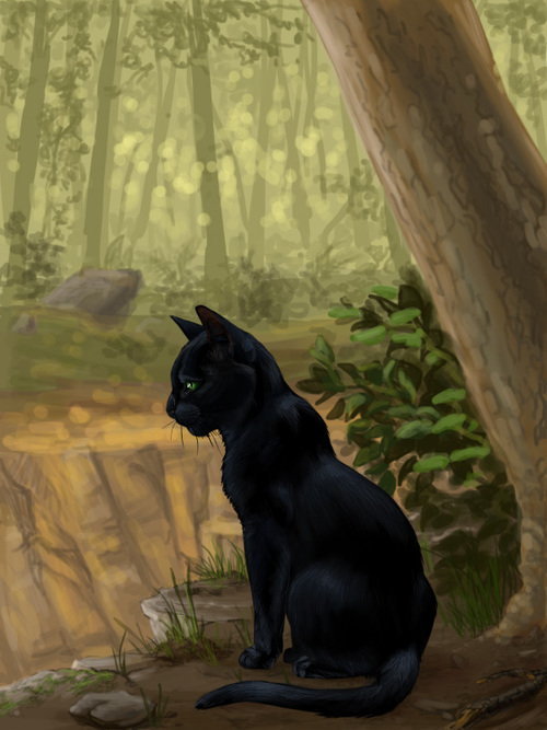 Images de Feuille de Houx (Hollyleaf)