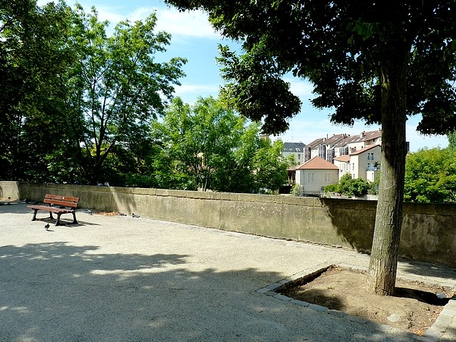 Metz sur le quai Félix Maréchal 17 Marc de Metz 22 11 201