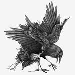 Le Manoir du Corbeau