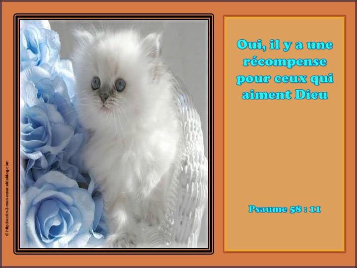 Il y a une récompense pour ceux qui aiment Dieu - Psaumes 58 : 11