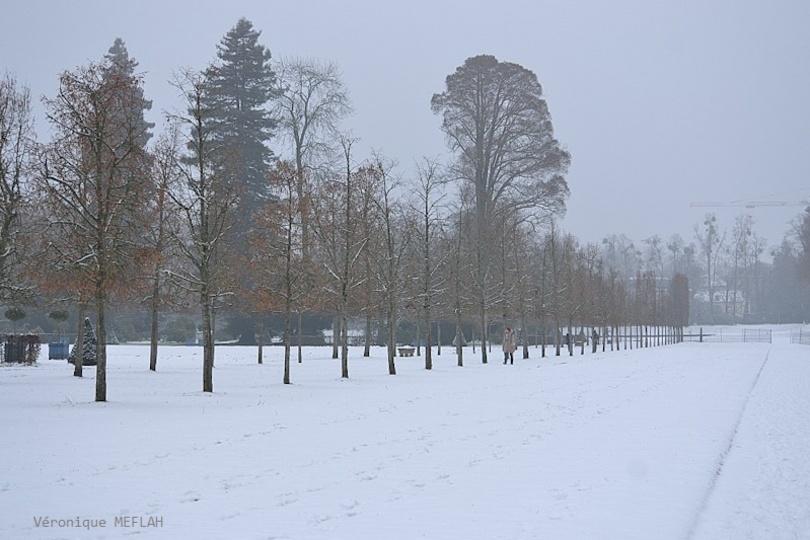 Rambouillet sous la neige (22 janvier 2019)