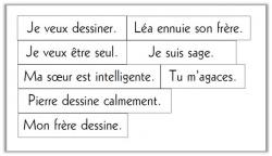 La phrase négative CE1