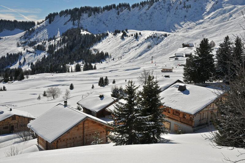 Balade d'hiver : le Praz-de-Lys (6)