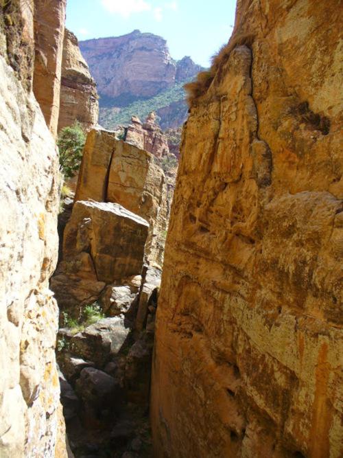 l'église crypte de Enda Aboun Yemata (Guh)