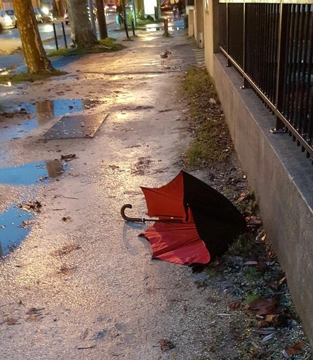 Participez au Café Thé n° 73 - Parapluie abandonné...
