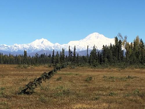 Aux confins de l'Alaska