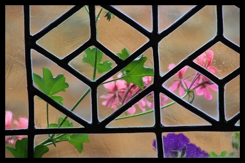 fenêtre (2)