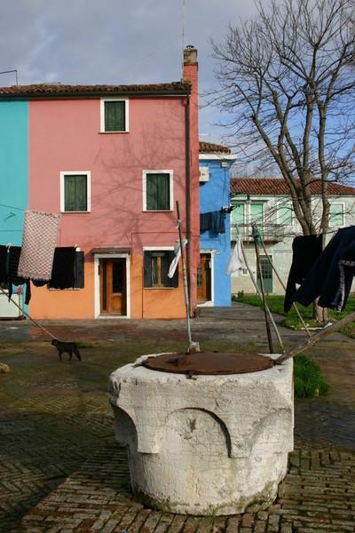Blog de dyane :Traces de Vie, Un peu d eau ?