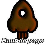 codes html