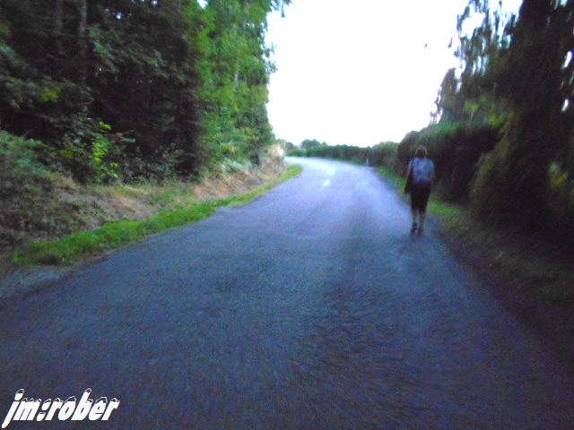La promenade du soir