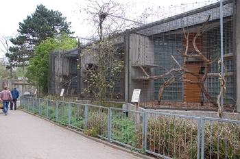 Zoo Osnabruck d50 2012 253
