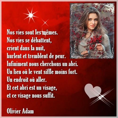 Olivier Adam, Falaises