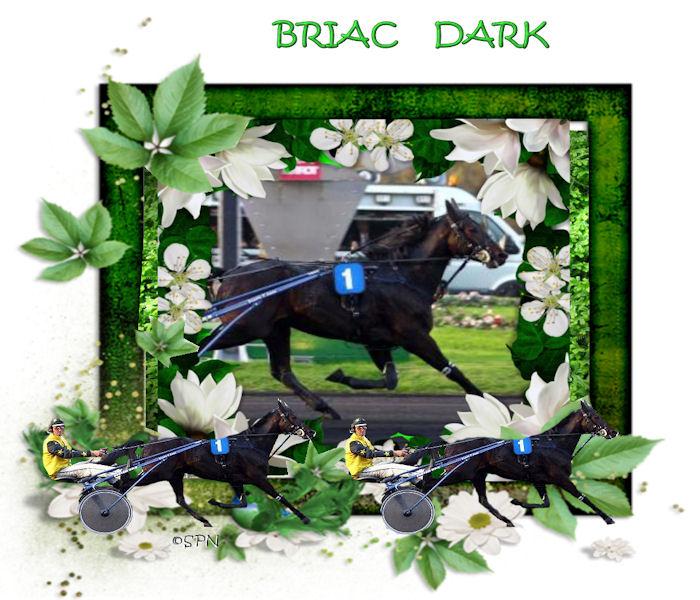 BRIAC DARK