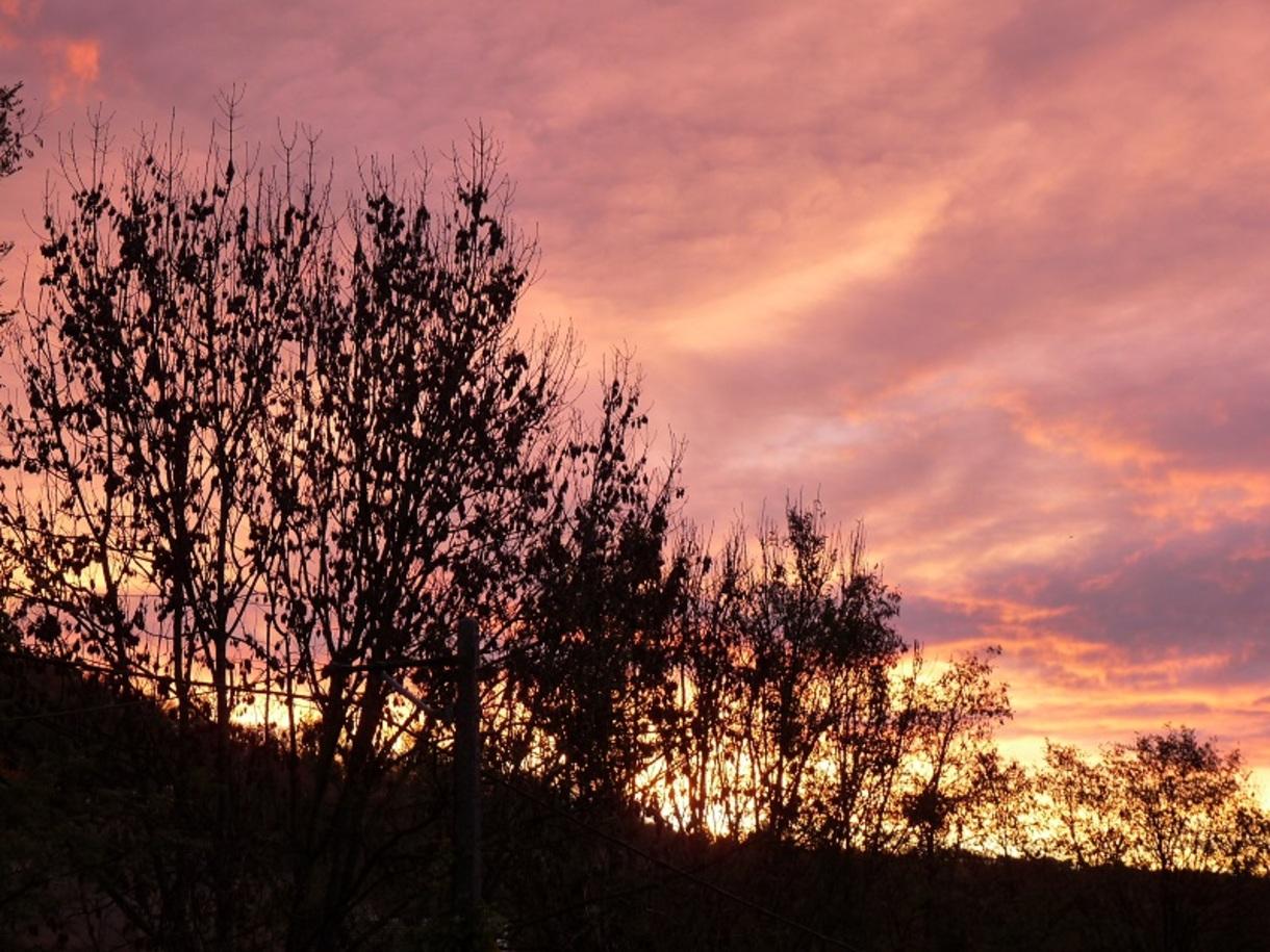 Ce matin, la vue de ma fenêtre